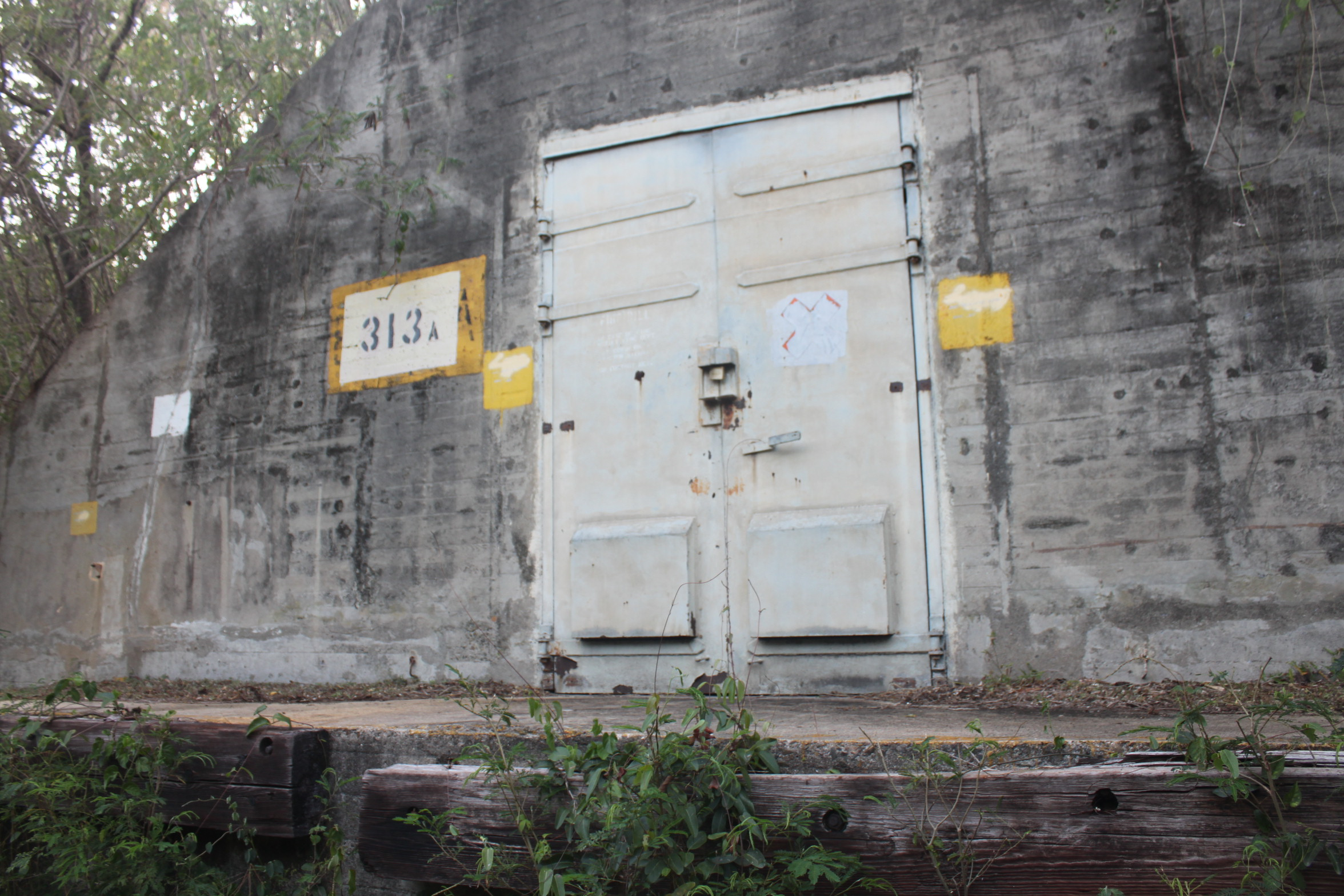 photo essay  abandoned vieques  puerto rico
